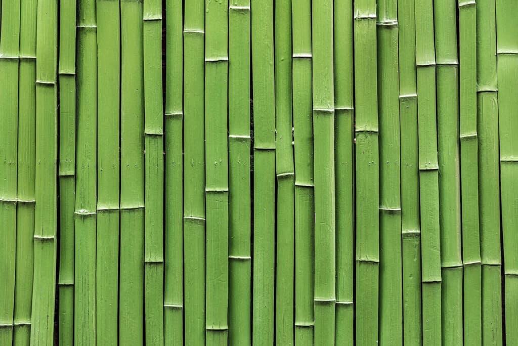 troncos-bambu